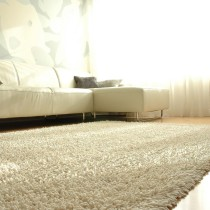 Order the top couch cleaning, mattress cleaning, pet stain removal in New York City, Manhattan, NYC, Queens, Brooklyn, and Long Island as well as oriental rug cleaning, and dust mite removal.