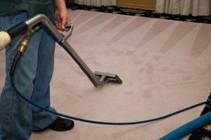 🧼 Organic Carpet Cleaning NYC - NYC